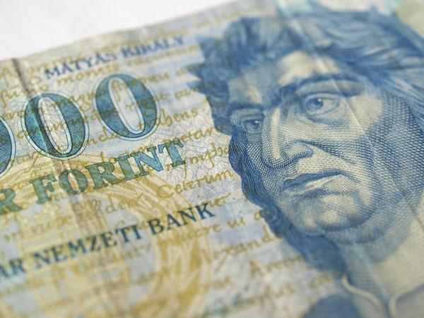 tanie z rabatem najwyższa jakość na stopach zdjęcia Kurs forinta (HUF) najsłabszy w historii do euro (EUR) przez ...