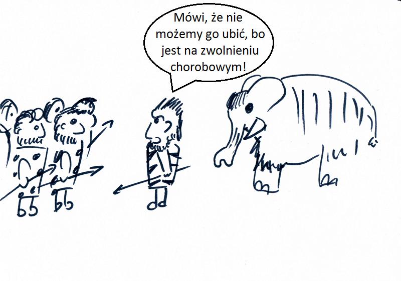Minimalny mamut wiecznie za mały.