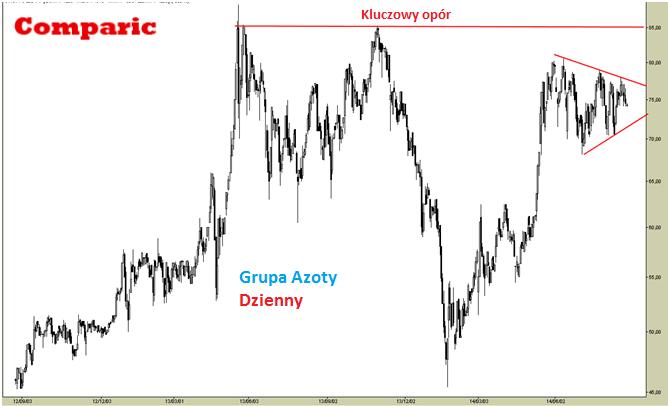 Grupa Azoty [ATT] - analiza na zamówienie 25 sierpnia 2014