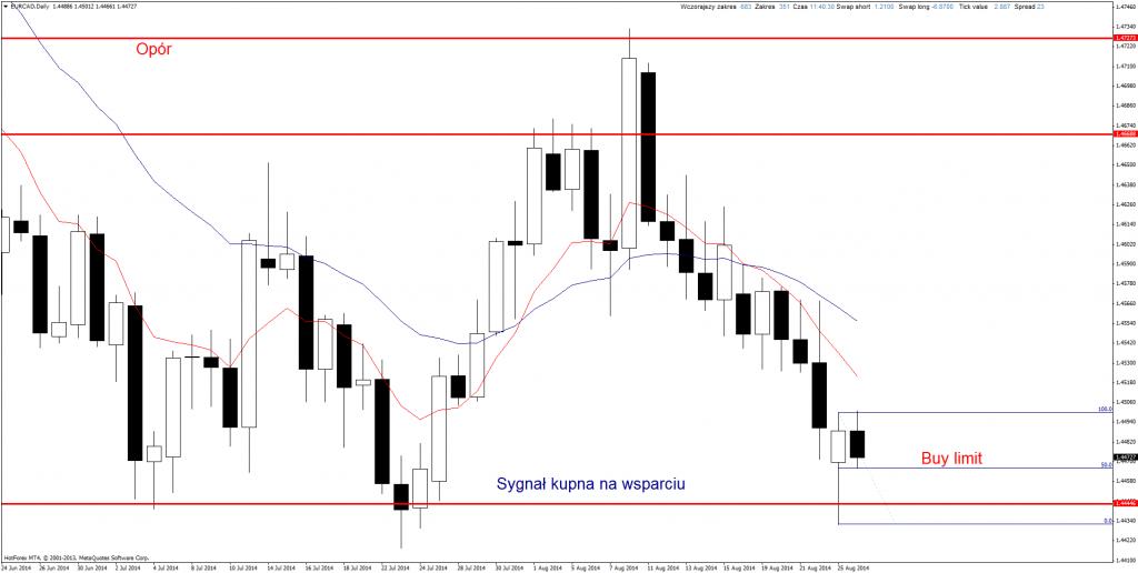 Strategia Price Action Marcin Wenus