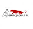 grupa jaguar logo