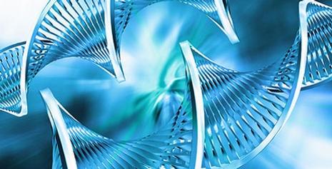 Udany rok dla polskiej biotechnologii. OncoArendi, Selvita, Ryvu, Celon Pharma, NanoGroup