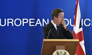 David Cameron nie traci czasu i rozpoczyna przygotowania do referendum