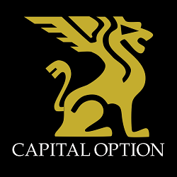 IQ OPTION – Begyndere