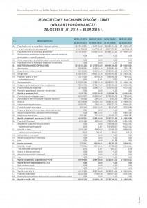 Rachunek zysków i strat po III kwartałach 2015
