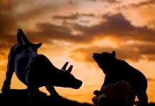 byk i niedźwiedź na tle nieba