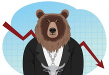 bear, byki, Comparic