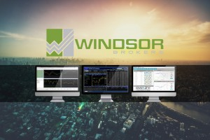Windsor Brokers - webinary