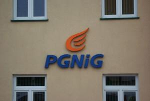 logo pgnig