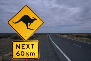 znak z kangurem