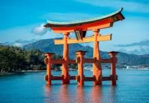 japońskie coś na wodzie