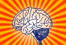 Mózg i psychologia tradingu