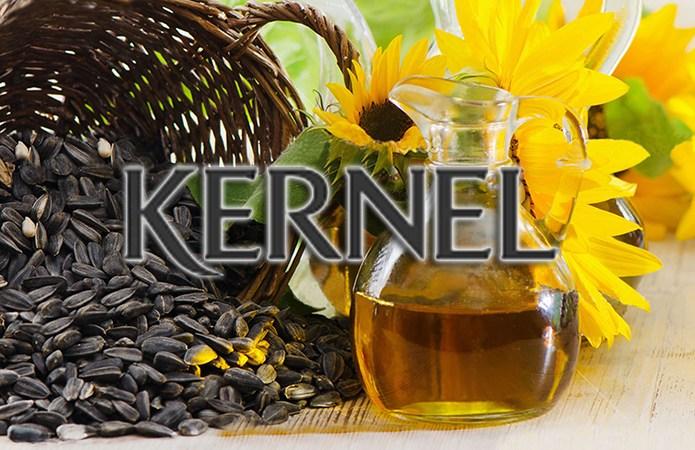 Akcje spółki kernel tracą w poniedziałek 27 maja