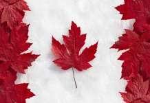 Kurs dolara kanadyjskiego
