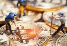 Górnik wydobywający Bitcoin BTC