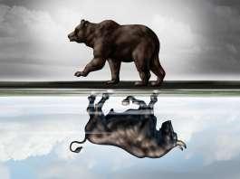 Niedźwiedź i byk