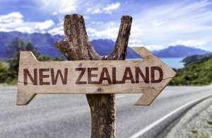 """Znak na drodze wskazujący kierunek """"New Zealand"""" Nowa Zelandia"""