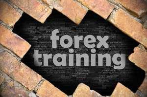 Poradnik rynku Forex