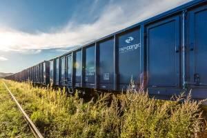 Lokomotywa PKP Cargo na tle łąki i niebieskiego nieba