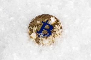 crypto winter bitcoin cc