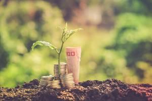Frank i dolar w miejscu, kurs euro bez zmian do złotego. Ile kosztuje funt w czwartek, 21 listopada 2019 roku na Forex?