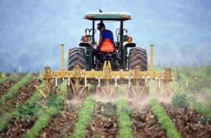 KSG Agro skoncentrowało się na poprawie kluczowych wskaźników finansowych