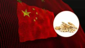 Soja cieszy się dużym popytem ze strony Chin na początku bieżącego roku
