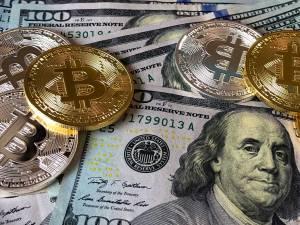 Bitcoin (BTC) będzie w portfelu nawet 5% spółek giełdowych, uważa analityk Wedbush