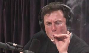 Dogecoin pojawi się, gdy Tesla wykryje na drodze Shiba Inu, żartował Elon Musk