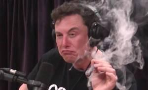 Bot, który kupuje bitcoina (BTC) za każdym razem gdy Elon Musk (Tesla) tweetuje o kryptowalucie