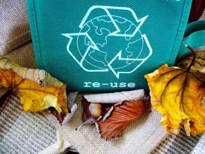 Recykl i Orzeł Biały: czy spółki śmieciowe to nowa fotowoltaika na GPW?