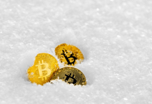 kurs-bitcoina-krypto-zima