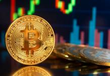 Bitcoin ETF podbija USA. Kryptowaluta odniosła sukces na giełdzie